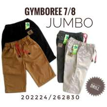 Gymboree Celana Pendek Jumbo 202224 262830 (9-14Th)