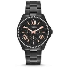 Fossil [Original] Cecile Am4522 Multifunction Black Stainless Steel Watch
