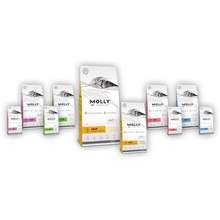 Molly New Packaging Cat Food Adult Chicken/ Kitten Chicken/ Adult Salmon (Repack 1Kg)