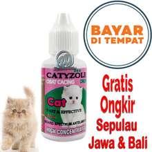 Segitu Petshop Catyzole Obat Cacing Kucing Cacingan Kitten