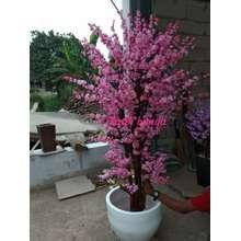 Sakura Indonesia Harga Bunga Plastik Sakura Terbaru November 2020