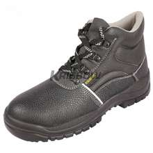 Arrow Safety Shoes 6In